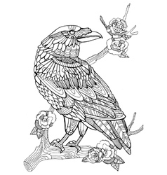 Crow bird coloring book for adults vector image vector image