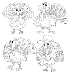 Doodle animal outline of turkey in four actions vector