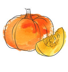 drawing pumpkin vector image