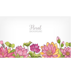 Horizontal banner or floral background decorated vector