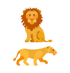 Lion and lioness wildlife animal leo vector