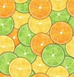Seamless Pattern with Oranges Lemons and Limes vector image