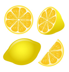 set of lemon slices isolated on white background vector image