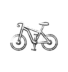 Sport race bicycle vector