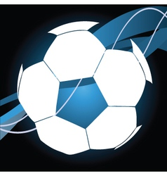 soccer ball vector image vector image