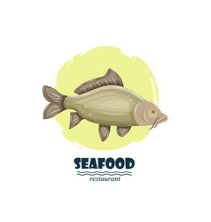 common carp seafood restaurant label with splash vector image