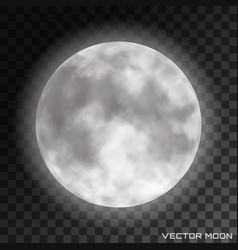 realistic beautiful moon on transparent vector image