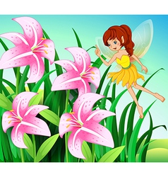 A fairy pointing the pink flowers at the garden vector image