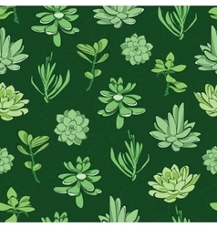 fresh green succulents seamless pattern vector image