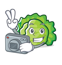 Photographer lettuce character cartoon style vector