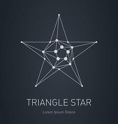 Polygonal Star Modern stylish logo Design element vector