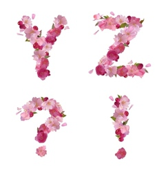 Spring alphabet with cherry flowers YZ and signs vector image
