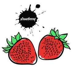 berry red strawberry vector image vector image