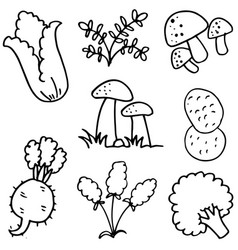 Doodle of vegetable various hand draw vector
