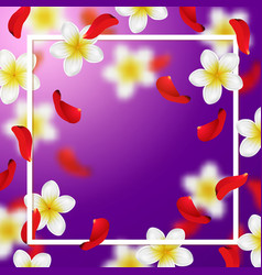 summer and spring background with tropical flower vector image vector image