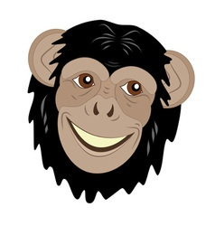cute monkey head vector image vector image