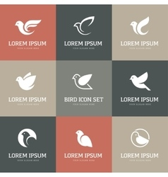 White bird icons set vector image vector image