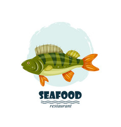 flat perch seafood restaurant label with splash vector image vector image