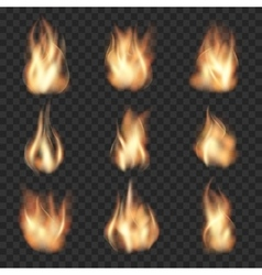 Realistic fire flames on checkered vector image