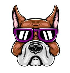big head pitbull for mascot inspiration vector image