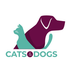 Cats and dogs vet clinic pets shop or shelter vector