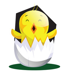 easter chick hatching from egg shell web on white vector image