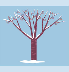 Guelder rose or holly tree covered snow winter vector
