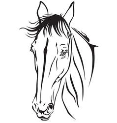 Horse fase vector