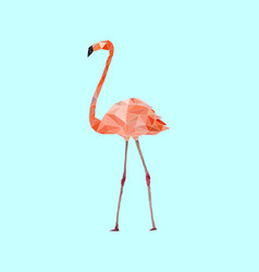 low poly colorful flamingo bird on blue vector image