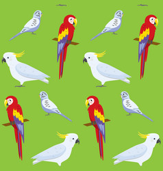seamless pattern with colorful parrots vector image