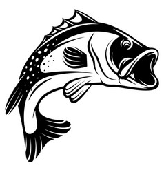 monochrome of bass with fins vector image