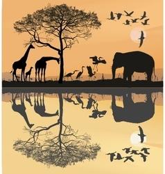 Savana with giraffes herons and elephant vector image vector image