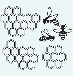 Bees on honey cells vector image