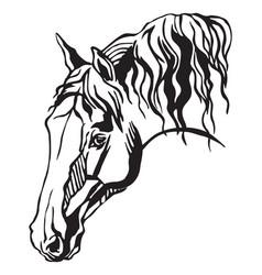 Decorative portrait of horse vector