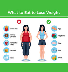 diet infographics layout vector image