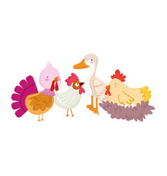 Farm animals poultry goose duck rooster turkey hen vector