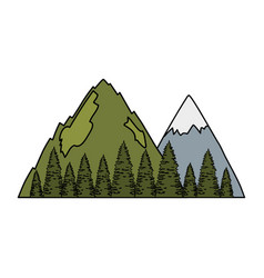Pines trees forest with mountains scene vector