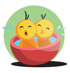 two cute yellow chick bathing web on white vector image