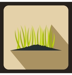 Young sprout seedlings icon flat style vector image