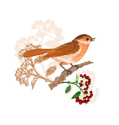 Bird on a branch with berries nature background vector image
