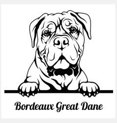Bordeaux great dane - peeking dogs - breed face vector