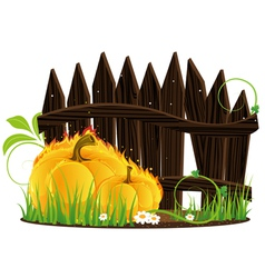 Burning pumpkins against a wooden fence vector
