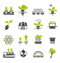 Collection flat icons - hydroponic gardening vector