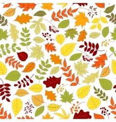 colorful leaves and berries seamless background vector image
