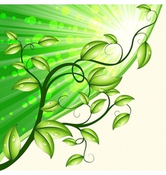 dynamic nature design in green and tan vector image