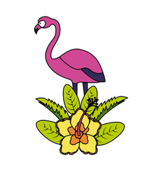 exotic flamingo leaves flower tropical vector image