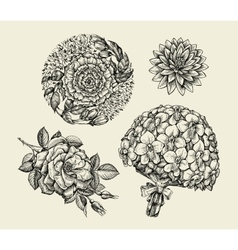 Flowers Hand drawn sketch flower rose peony vector