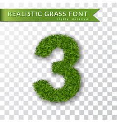 Grass number three green number three isolated on vector