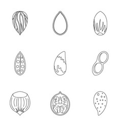 organic nuts icon set outline style vector image