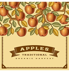 Retro apple harvest card vector image